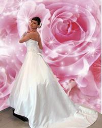 Wedding dress 558967341