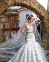 Wedding dress 558544688