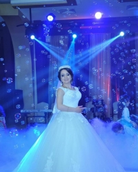 Wedding dress 160299871