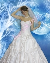 Wedding dress 438890955